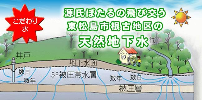 源氏ぼたるの飛び交う東松島市根古地区の天然地下水