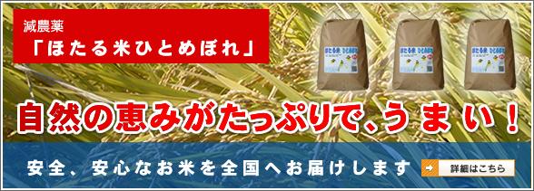 減農薬「ほたる米ひとめぼれ」のご購入はこちら