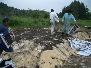 海産ミネラル(サンゴ、こんぶ、カツオ)を堆肥に入れる作業